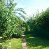 Bottom half of garden